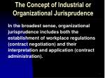 the concept of industrial or organizational jurisprudence5