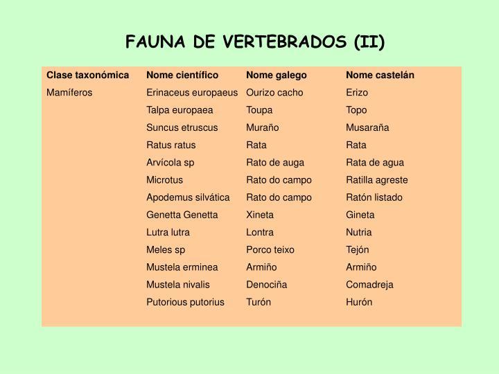 FAUNA DE VERTEBRADOS (II)