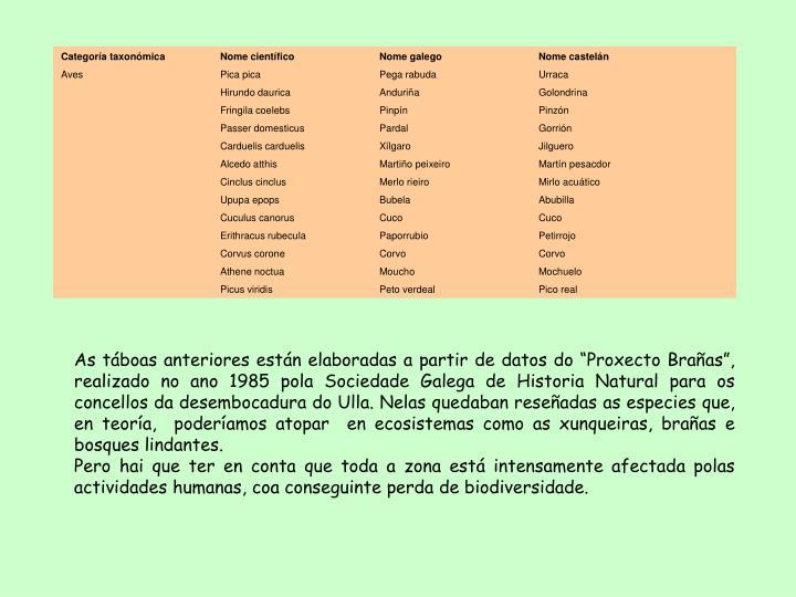 Categoría taxonómicaNome científico