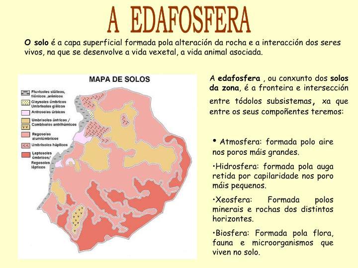 A  EDAFOSFERA