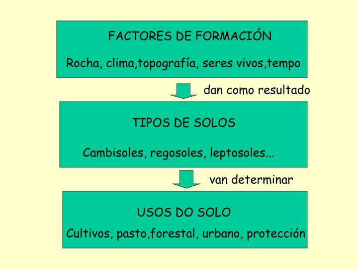 FACTORES DE FORMACIÓN