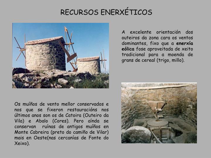 RECURSOS ENERXTICOS