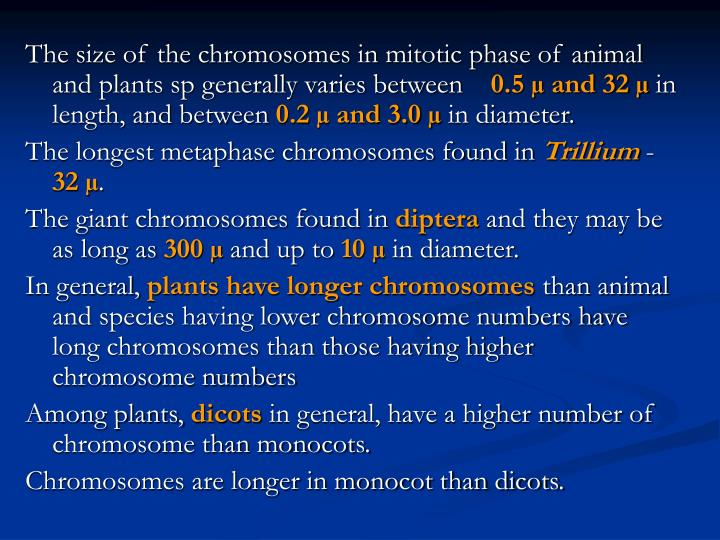 The size of the chromosomes in mitotic phase of animal and plants sp generally varies between