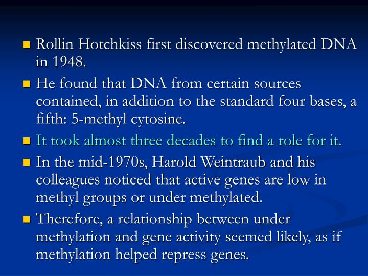 Rollin Hotchkiss first discovered methylated DNA in 1948.