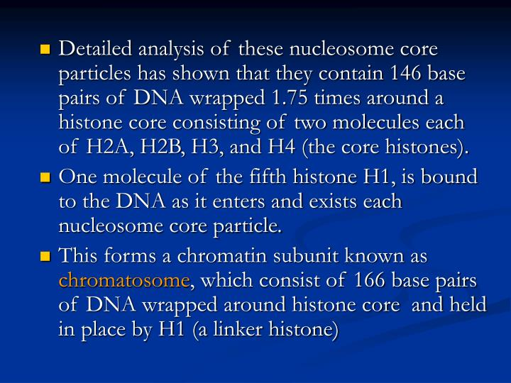 Detailed analysis of these nucleosome core particles has shown that they contain 146 base pairs of DNA wrapped 1.75 times around a histone core consisting of two molecules each of H2A, H2B, H3, and H4 (the core histones).