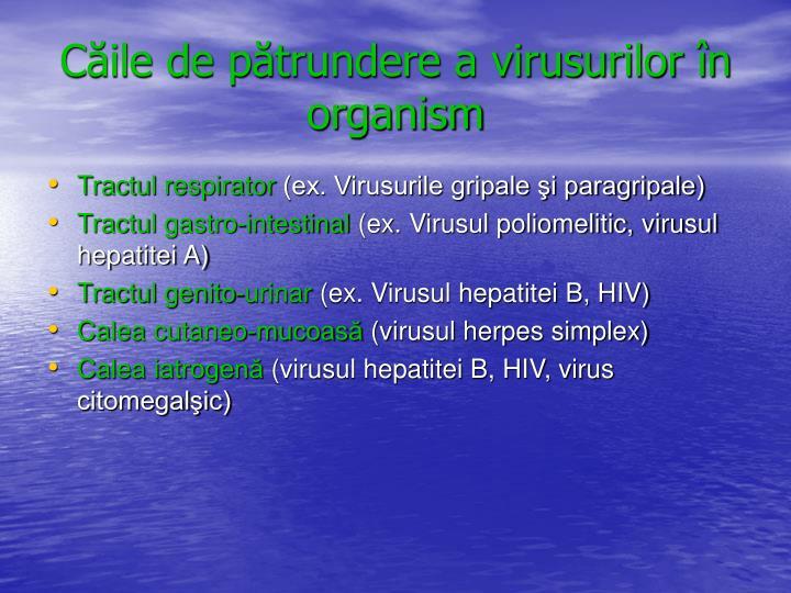 Căile de pătrundere a virusurilor în organism