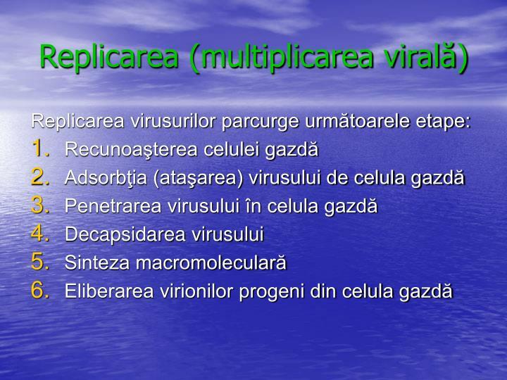 Replicarea (multiplicarea virală)