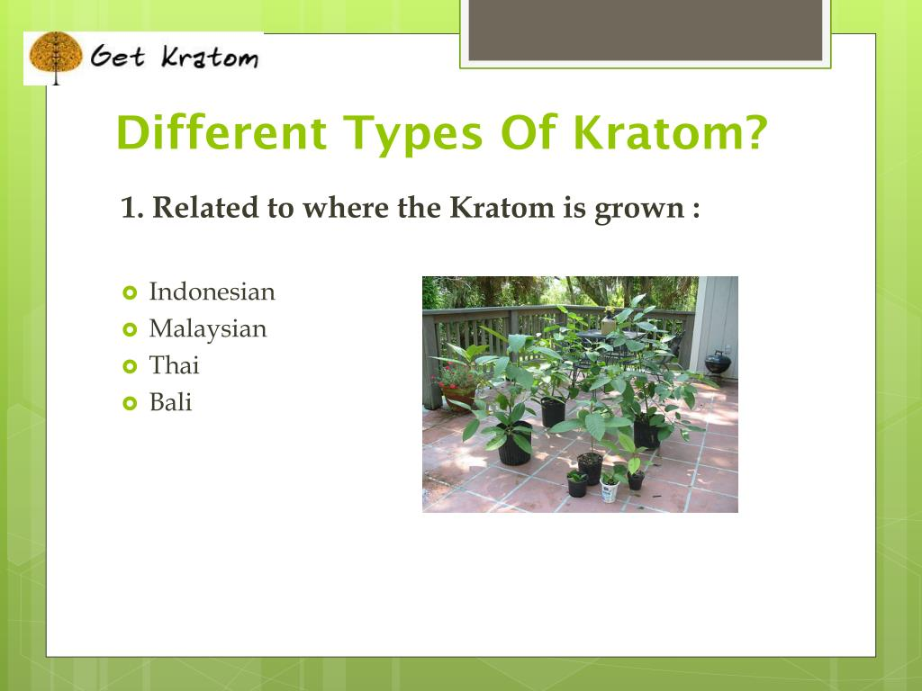 Different Types Of Kratom?