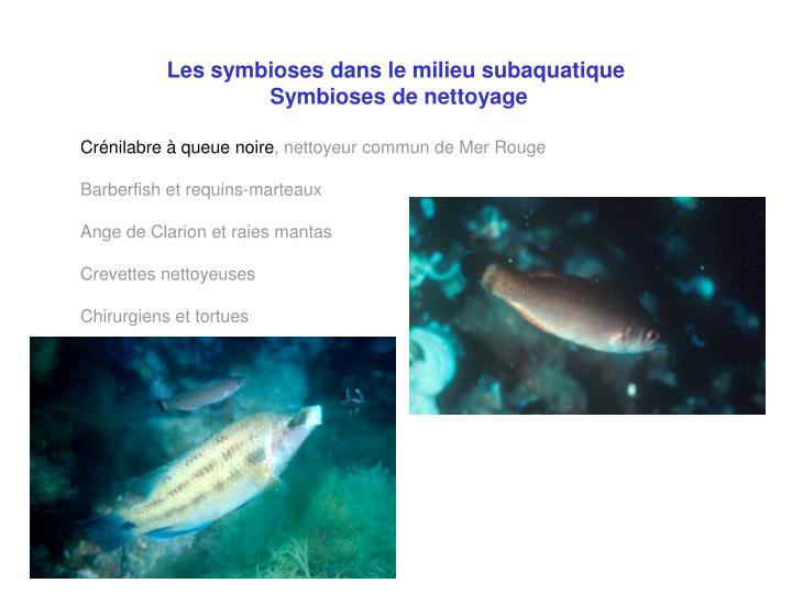 Les symbioses dans le milieu subaquatique
