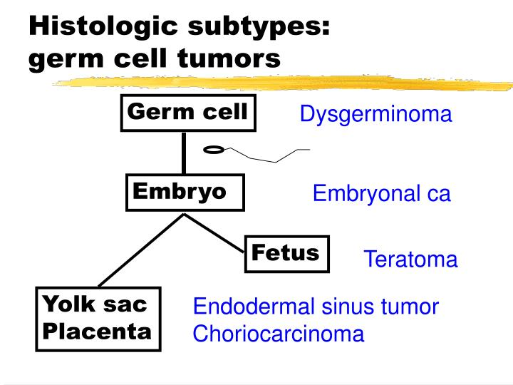 Histologic subtypes: