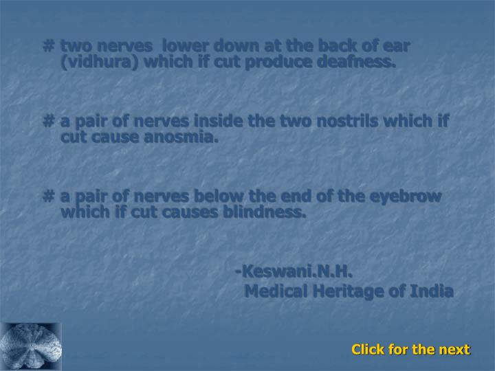 # two nerves  lower down at the back of ear  (vidhura) which if cut produce deafness.