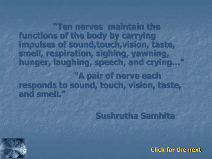 """""""Ten nerves  maintain the functions of the body by carrying impulses of sound,touch,vision, taste, smell, respiration, sighing, yawning, hunger, laughing, speech, and crying…"""""""