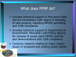 what does pprp do