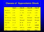 classes of hypovolemic shock