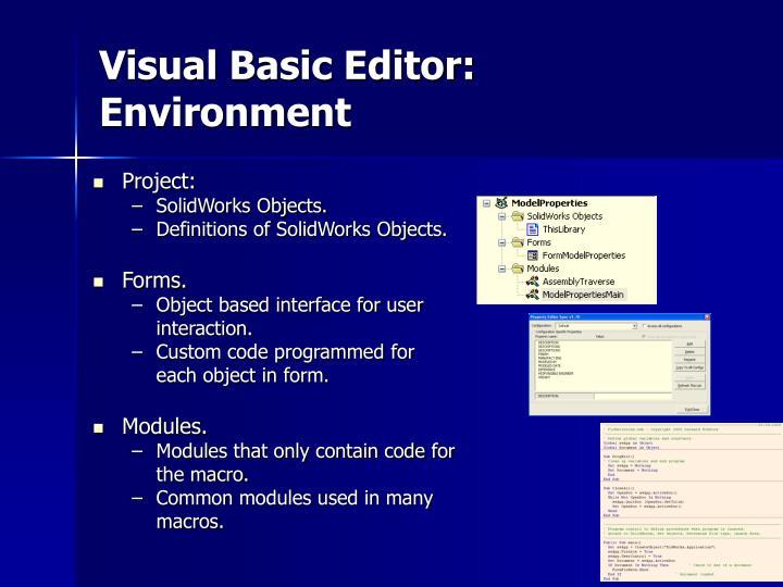 Visual Basic Editor: Environment