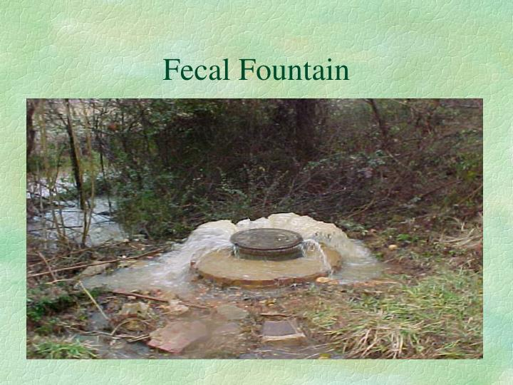 Fecal Fountain