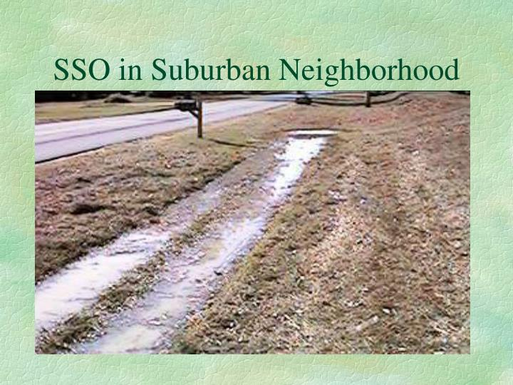 SSO in Suburban Neighborhood
