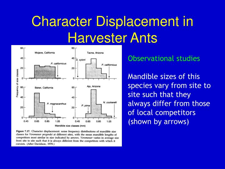 Character Displacement in Harvester Ants