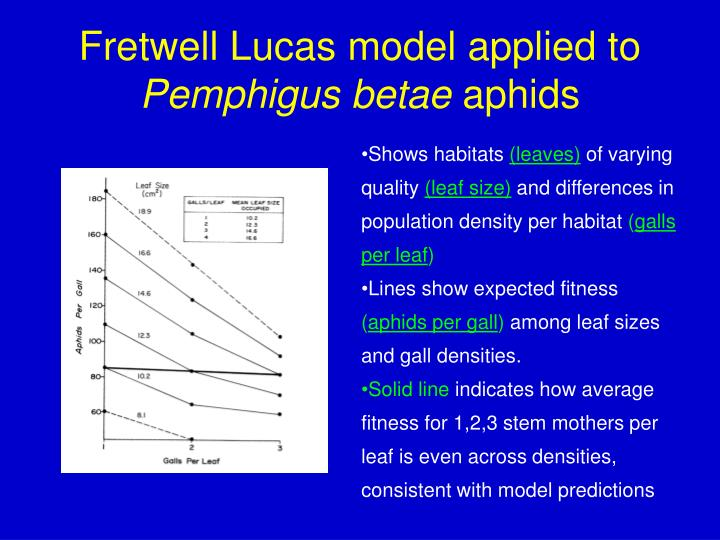 Fretwell Lucas model applied to