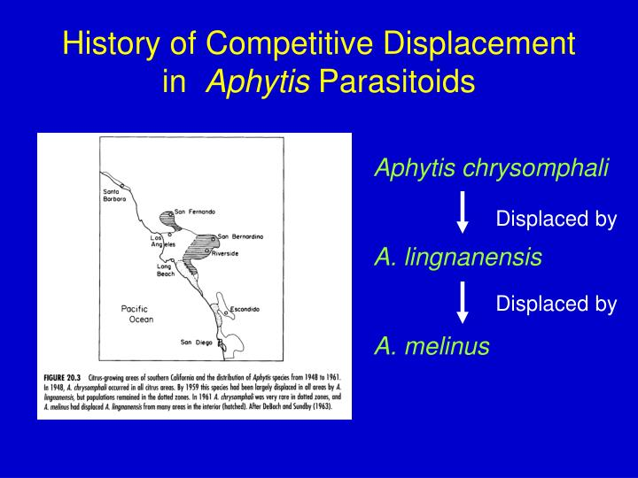 History of Competitive Displacement in