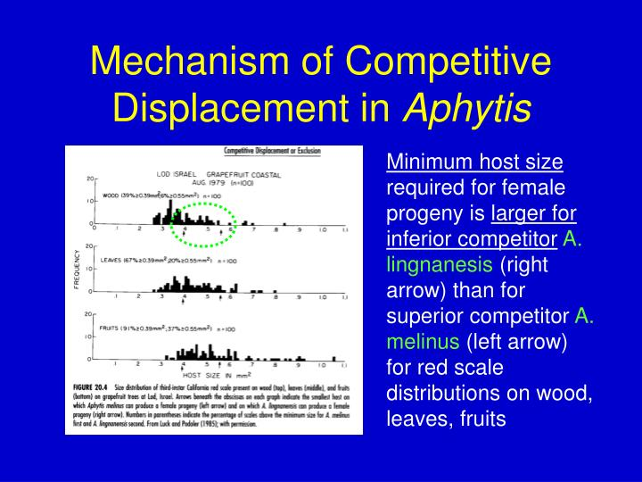 Mechanism of Competitive Displacement in