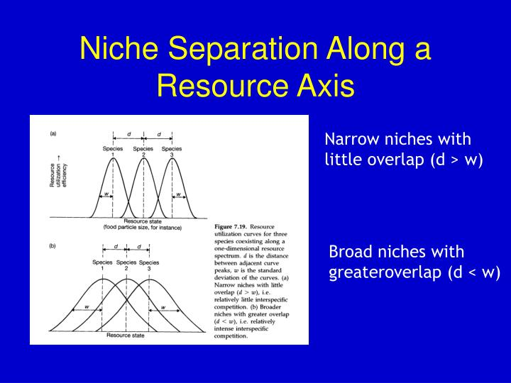 Niche Separation Along a Resource Axis
