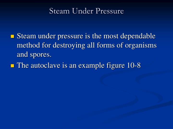 Steam Under Pressure