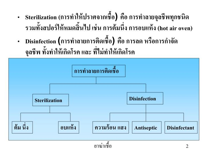 Sterilization ()