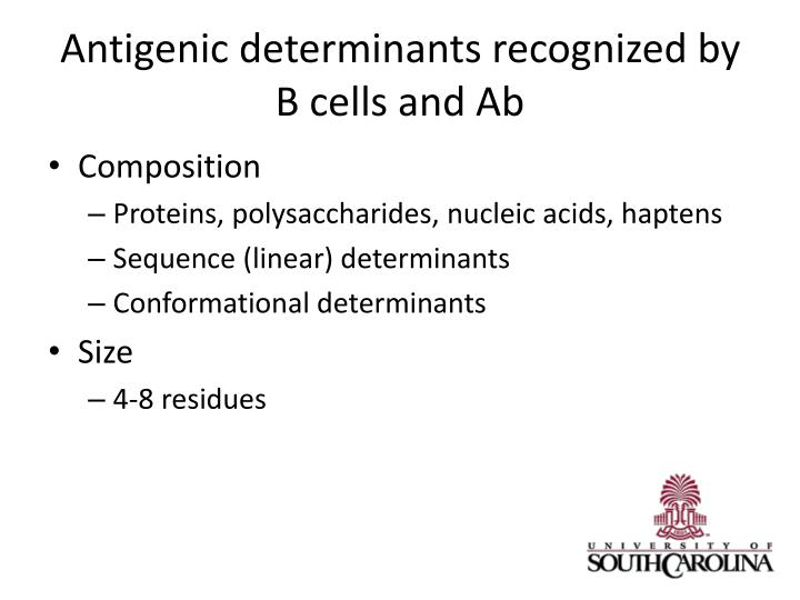 Antigenic determinants recognized by
