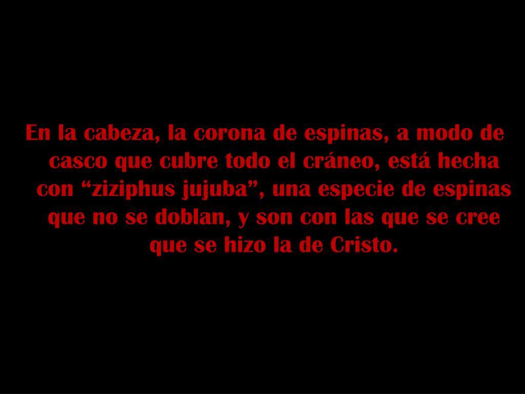 """En la cabeza, la corona de espinas, a modo de casco que cubre todo el cráneo, está hecha con """"ziziphus jujuba"""", una especie de espinas que no se doblan, y son con las que se cree que se hizo la de Cristo."""