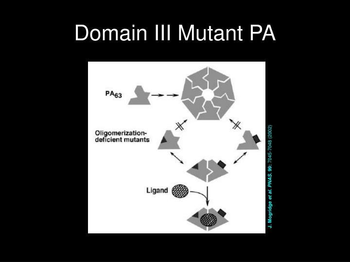 Domain III Mutant PA