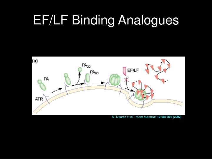 EF/LF Binding Analogues