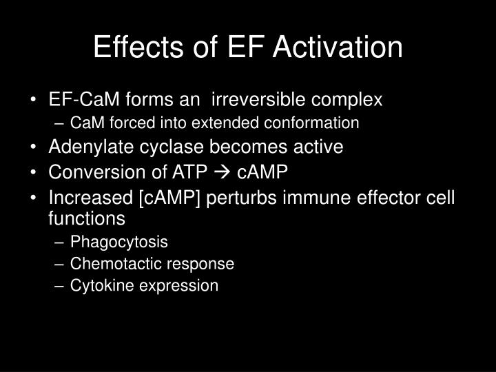 Effects of EF Activation