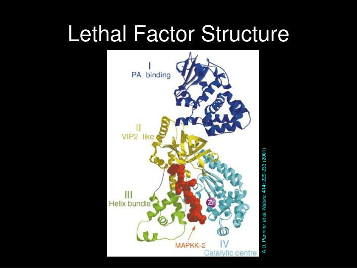 Lethal Factor Structure