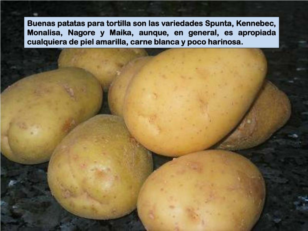 Buenas patatas para tortilla son las variedades