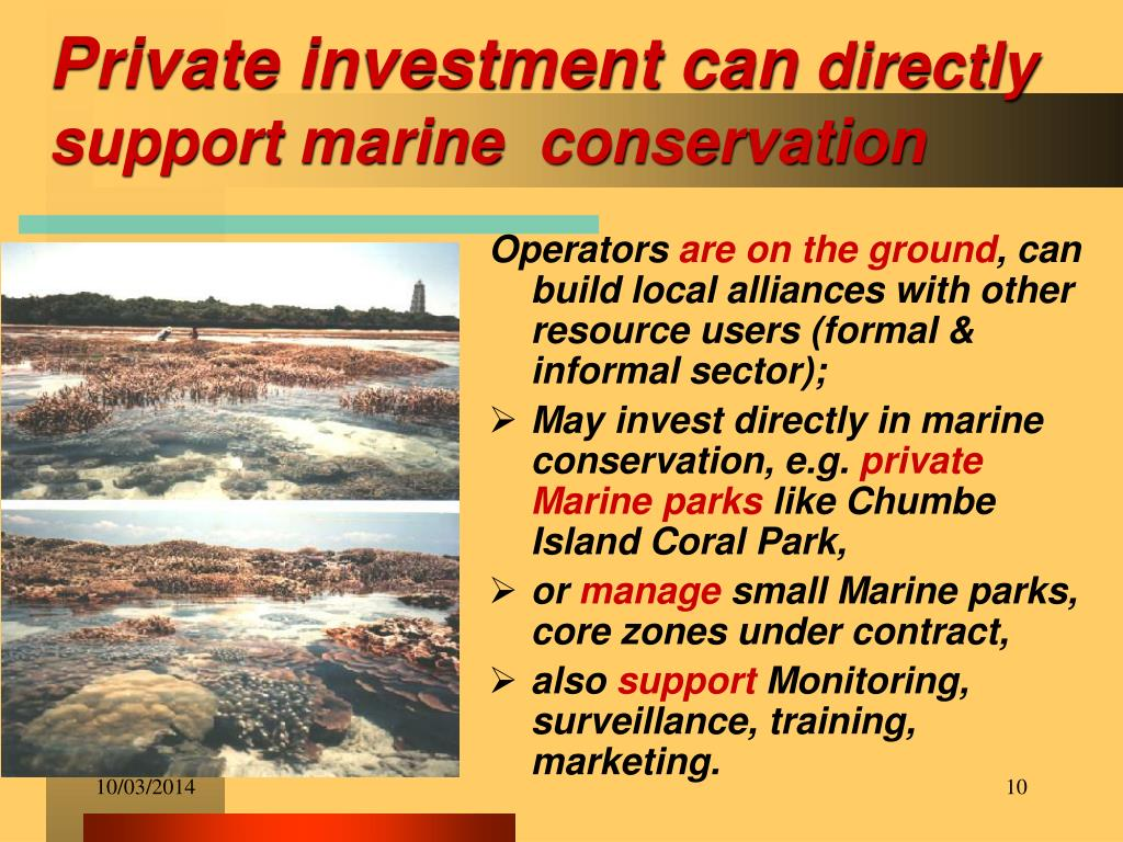 Private investment can