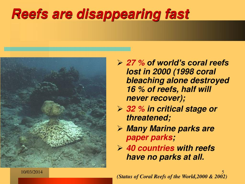 Reefs are disappearing fast