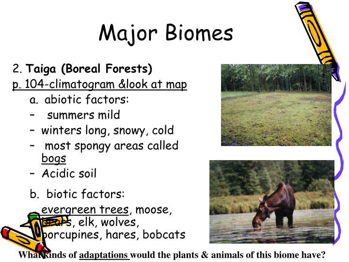 Major Biomes