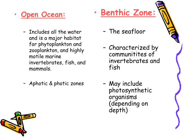 Open Ocean: