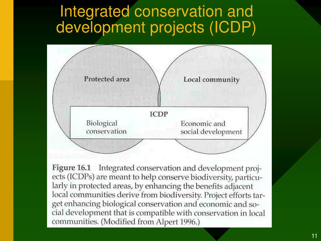 Integrated conservation and development projects (ICDP)