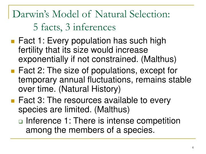 Natural Selection Facts And Inferences