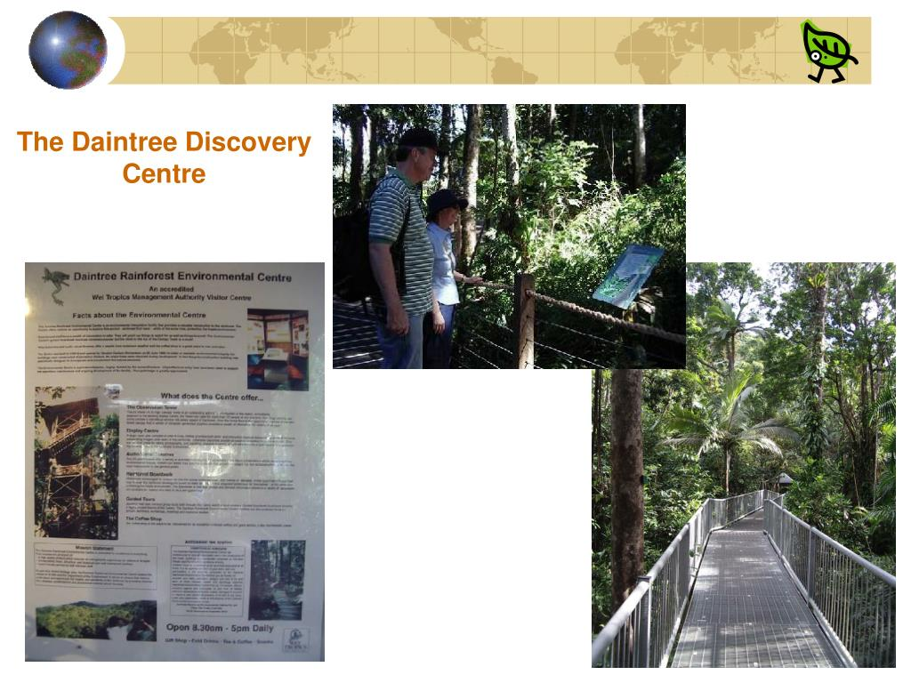 The Daintree Discovery