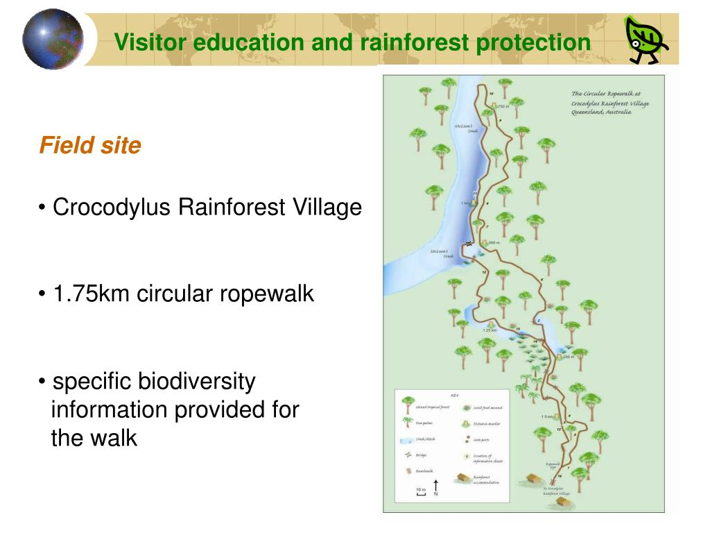 Visitor education and rainforest protection