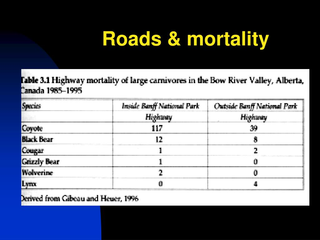 Roads & mortality