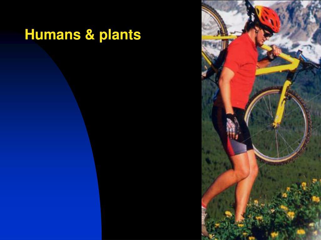 Humans & plants