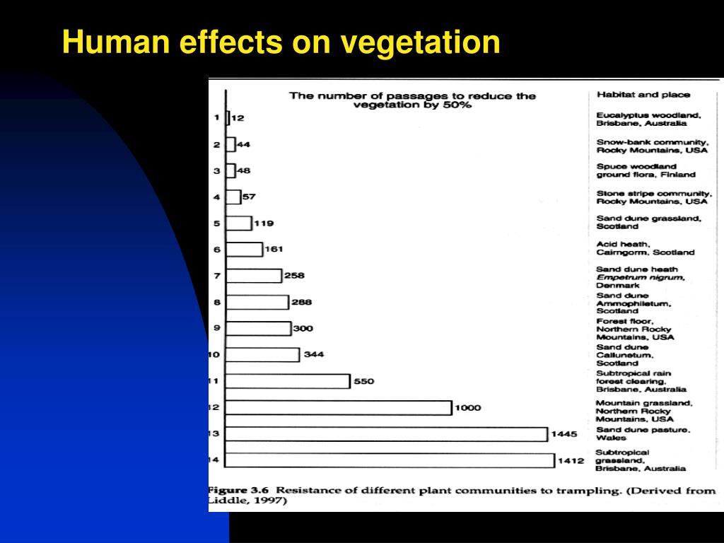 Human effects on vegetation