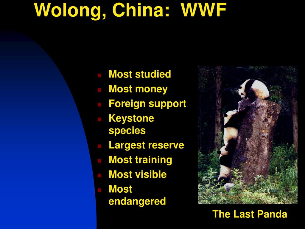 Wolong, China:  WWF