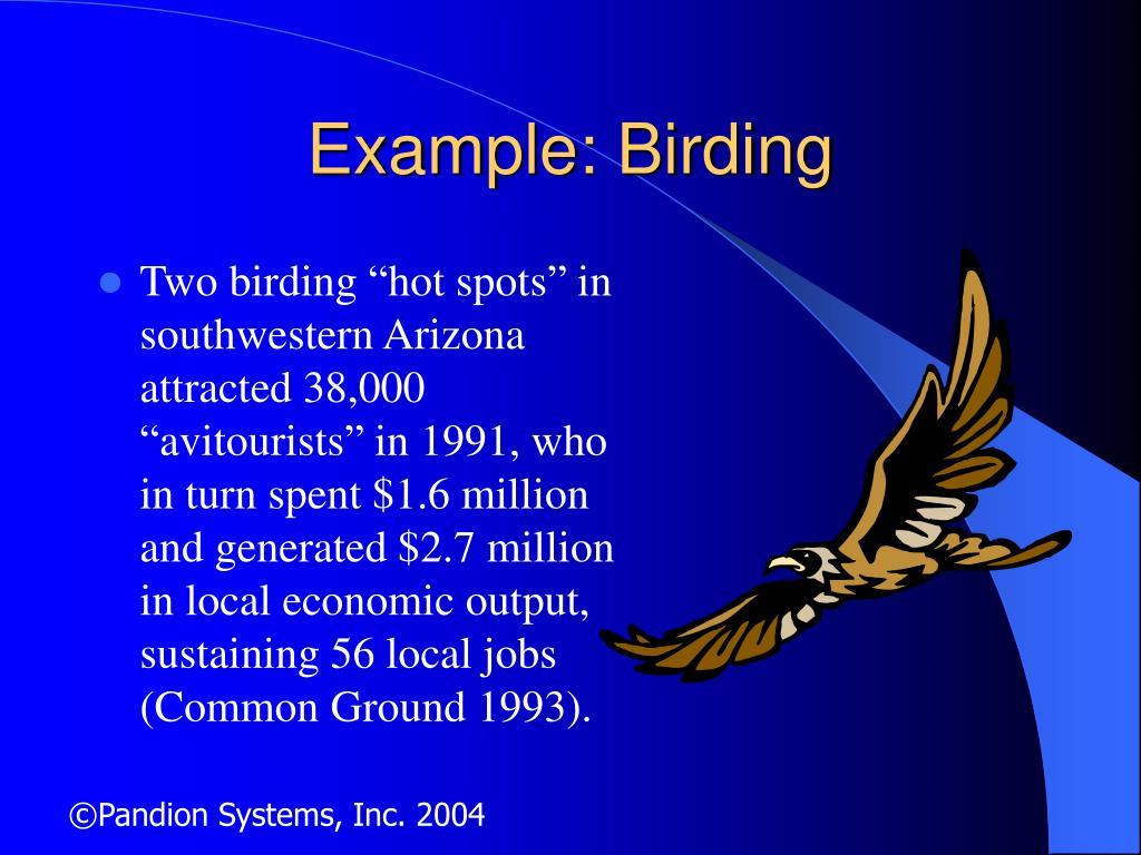 Example: Birding
