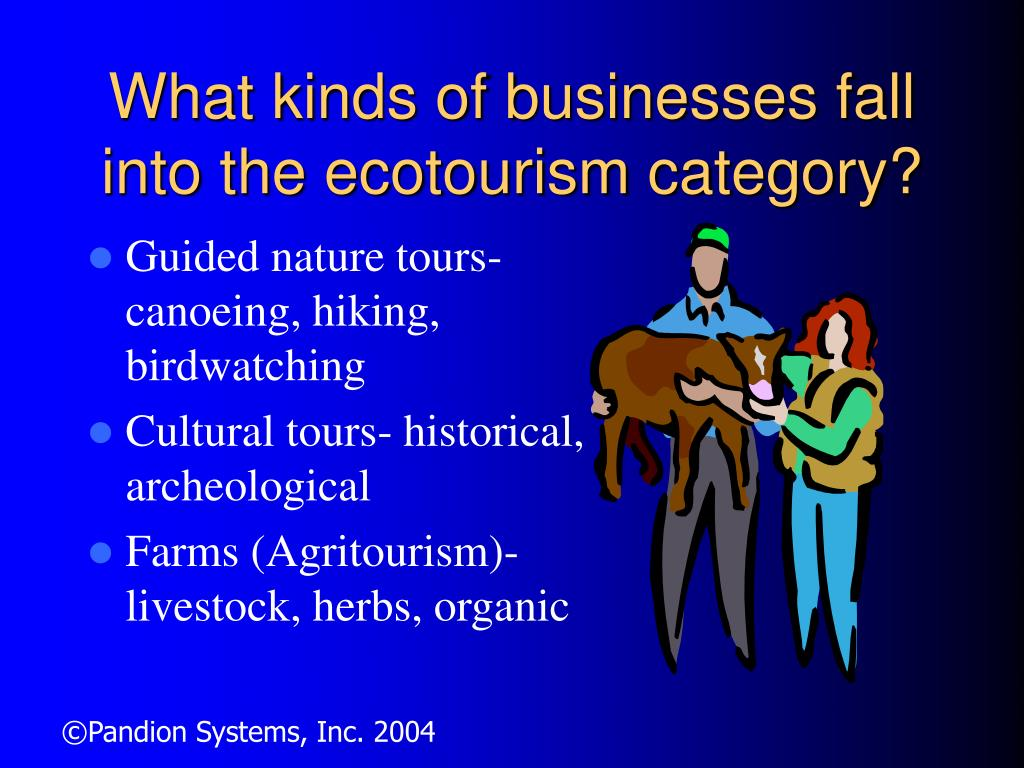 What kinds of businesses fall into the ecotourism category?
