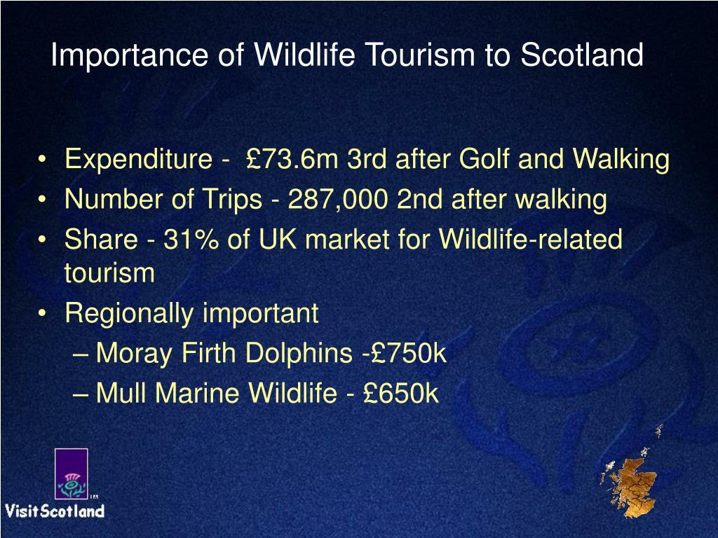 Importance of Wildlife Tourism to Scotland
